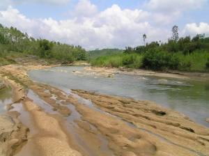 Lembah Sungai Oya (Wanagama Forest)